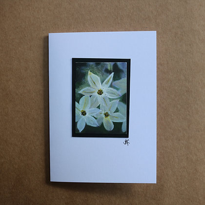 'Starflower' Greetings Card