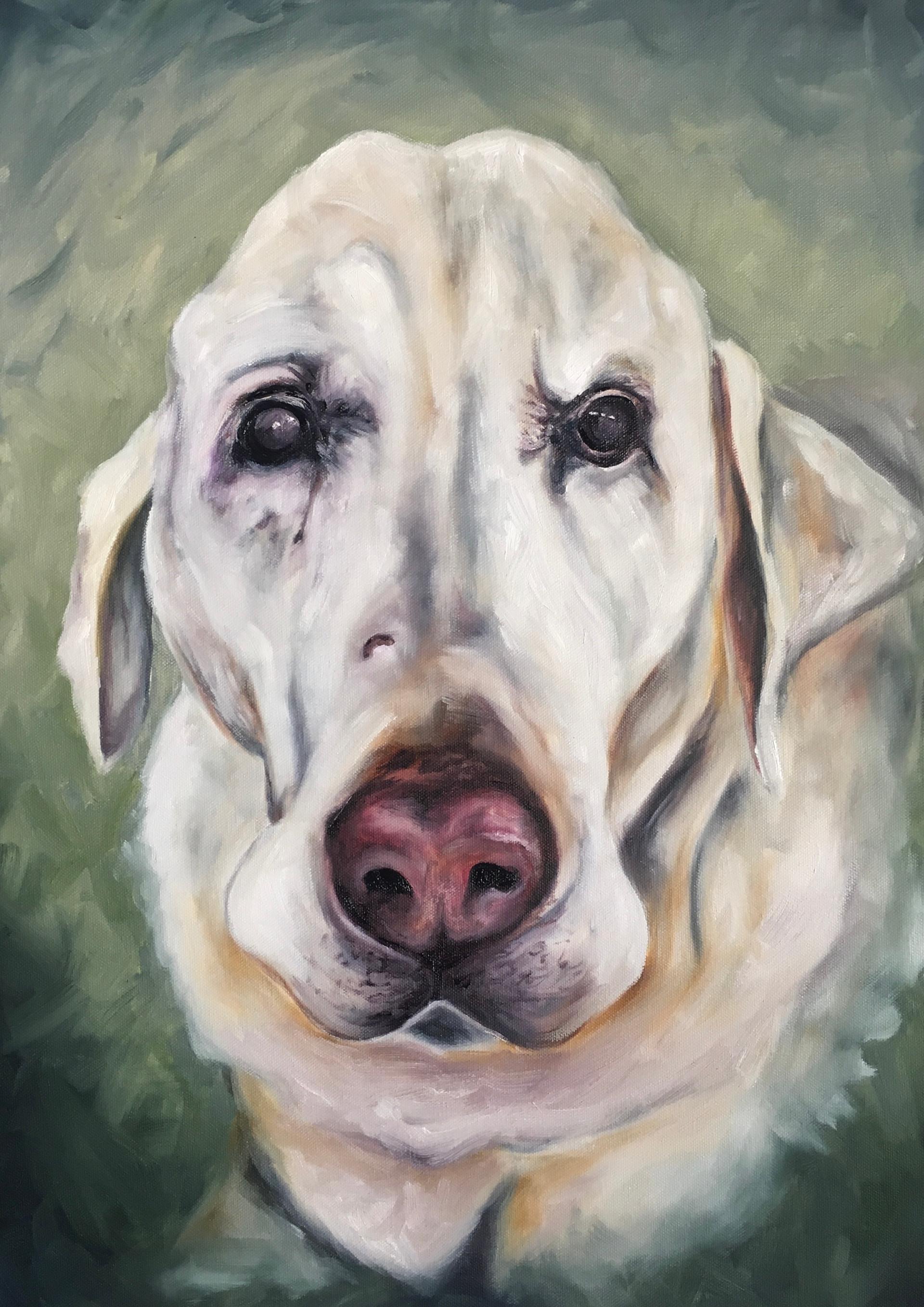 "2017 Oil on canvas 18X24"""