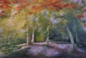 Fairhaven trees.JPG