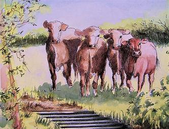 Cattle grid (2).JPG
