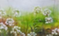 cowparsley card (2).jpg