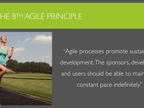 Agile Manifesto: Principle #8