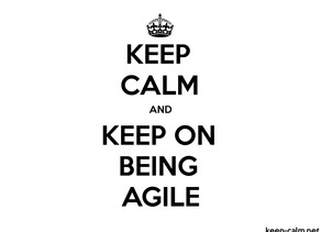 """What is the opposite of """"Being Agile""""?"""