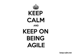 "What is the opposite of ""Being Agile""?"