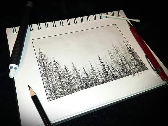"""Tree Sketch (2)"""