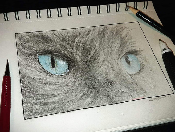 """""""Cat Eyes Sketch"""""""