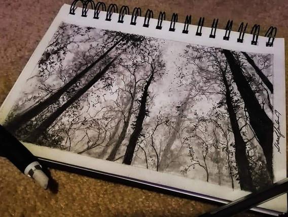 """Forest Sketch"""