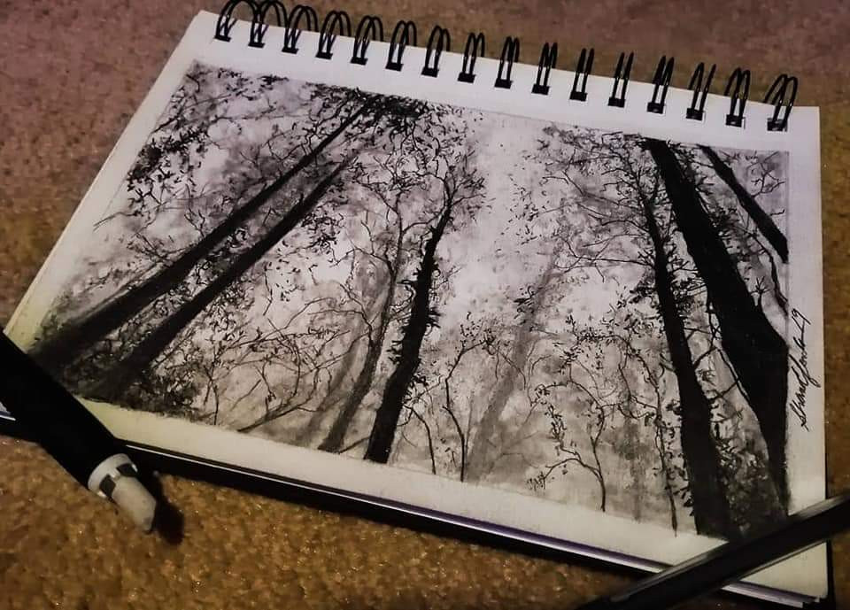 """Forest Sketch"""