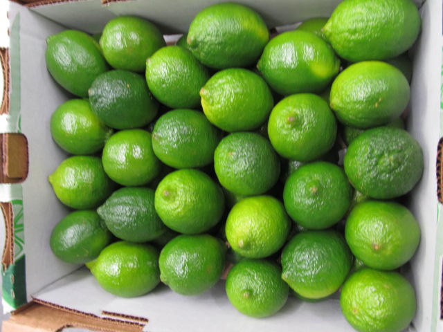 Plump Fruits 30-09-2011 003