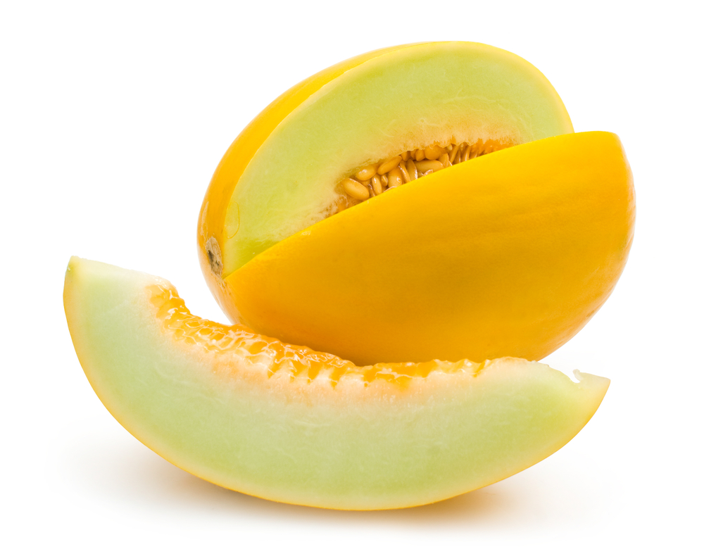 Agri - Melons 1