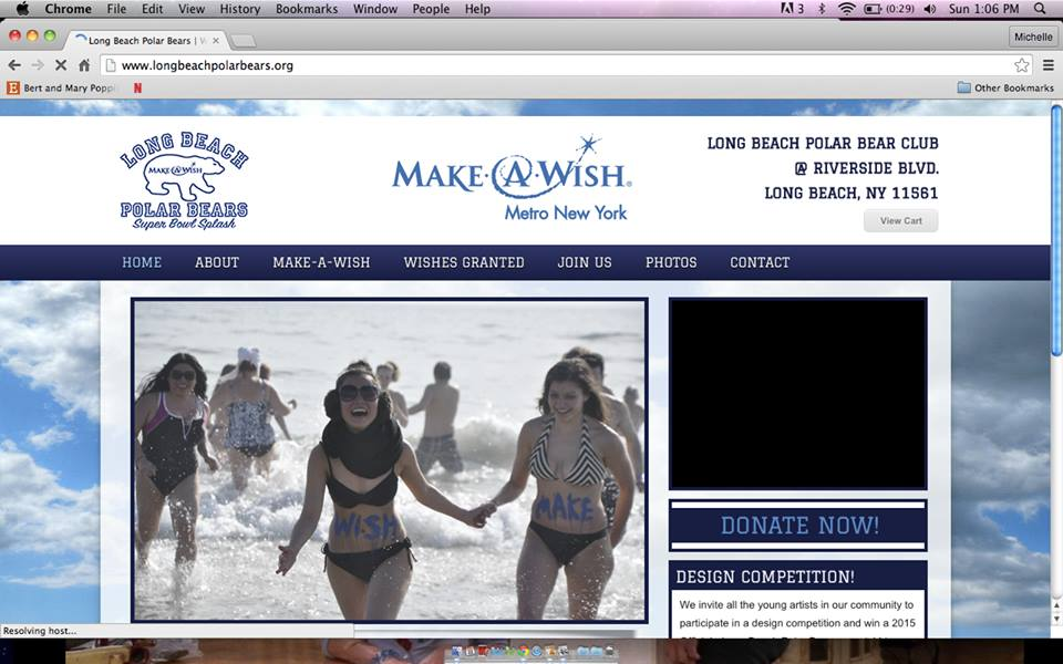[ Make-A-Wish ] Polar Bear Plunge