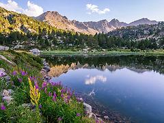 Superficie de Andorra. Guía turística Guiand. Descubre los rincones más fascinantes de el Principado.