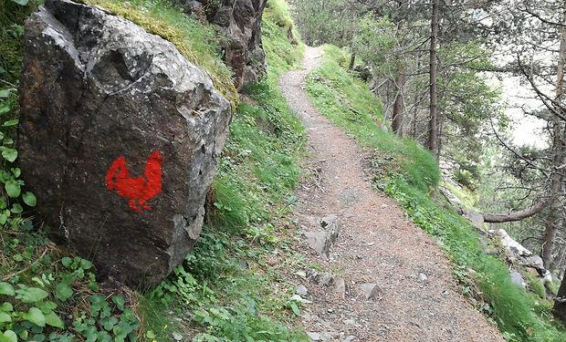 Camí del Gall, Este camino tiene varios ascensos y descensos bastante pronunciados.El recorrido empieza pasando por Grandvalira (por el sector de Soldeu). Se traviesa un antiguo puente de hierro y se finaliza por el camino de Galo de Bosc, que termina en la parroquia de Canillo.