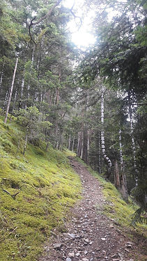 Aixovall, Coll de la Gallina. Esta ruta empieza en Bixessarri. Se debe llegar hasta el santuario de la zona y seguir por una pista de tierra hasta el Coll de la Gallina, donde acaba el ascenso. Des de allí, se sigue en bajada hasta la Fontaneda para tomar la carretera de Sant Julià de Lòria y finalizar el recorrido.