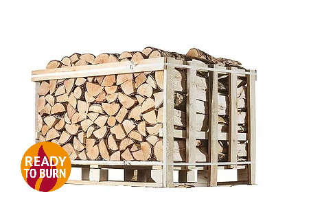 Prince Size Crate of Kiln Dried Birch