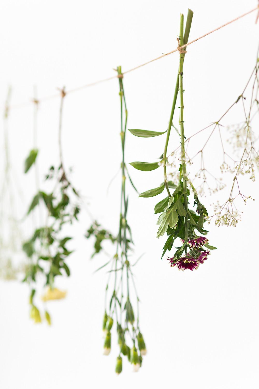 Kukkasomiste