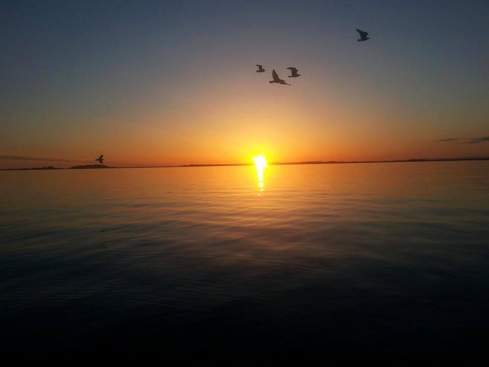 Solnedgang utenfor Hasselvika....