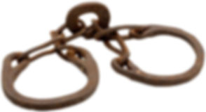 logo on website.jpg