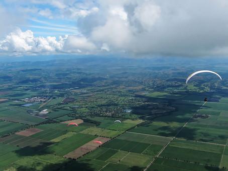 Un Excelente día de vuelo en Roldanillo !