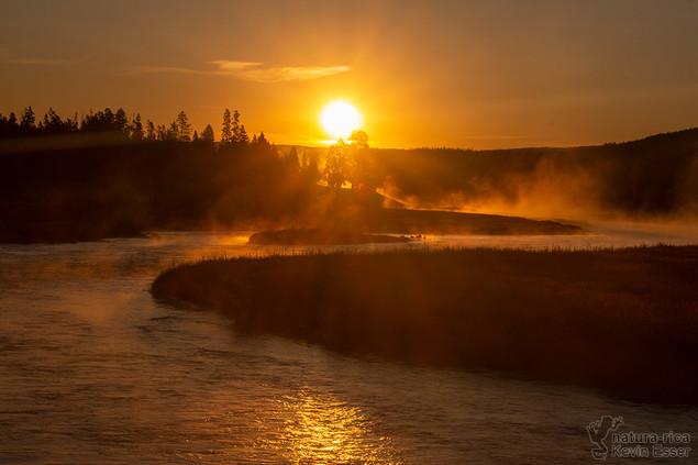 Madison River - Sunrise