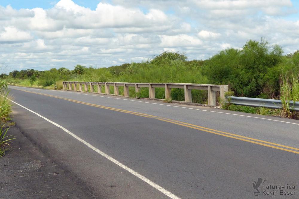 Chaco bridge