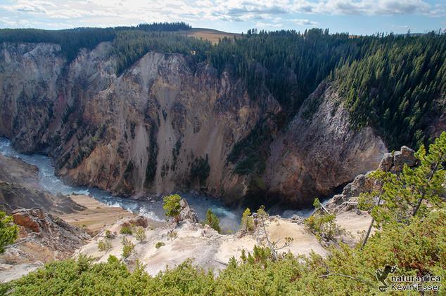 Grand Canyon of the Yellowstone.jpg