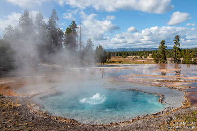 Firehole Spring