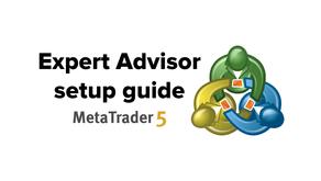 Expert Advisor setup guide