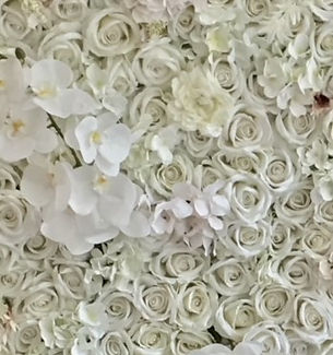 White Rosa Flower Wall.jpg