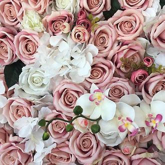 Rosa Pink.JPG