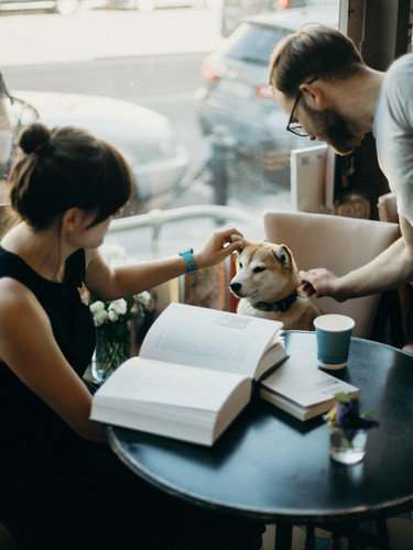 photo-of-people-beside-dog-2925321.jpg