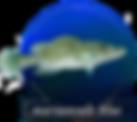 logo_lge.png