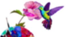 cours de dessin colibri.jpg