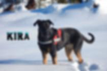 KIRA_2020-01-02_13.36.33.webp