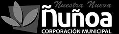 cmn-nunoa.png