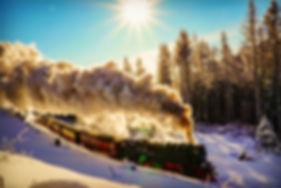 Harzer_Schmalspurbahn_im_Winter___c_Marc