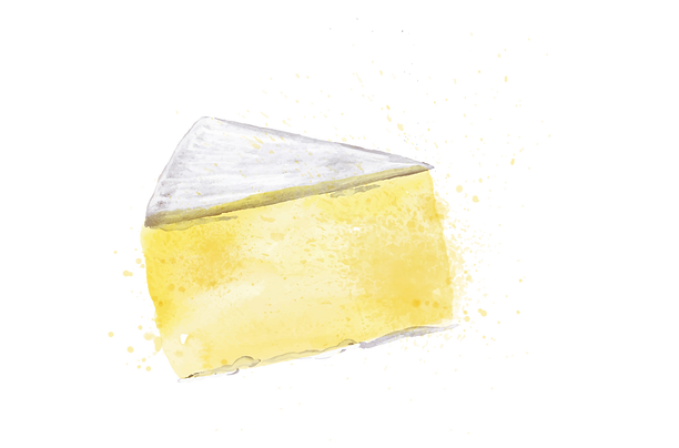 brie.png