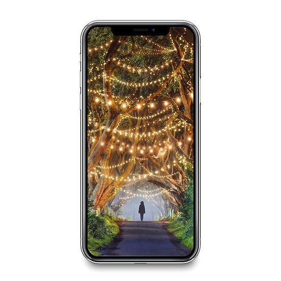 Dark Hedges Smartphone Wallpaper