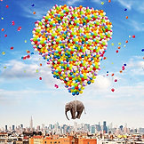 POSTER NYC Elephant