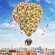 ACRYLIC GLASS ON ALUMINUM BASE NYC Elephant