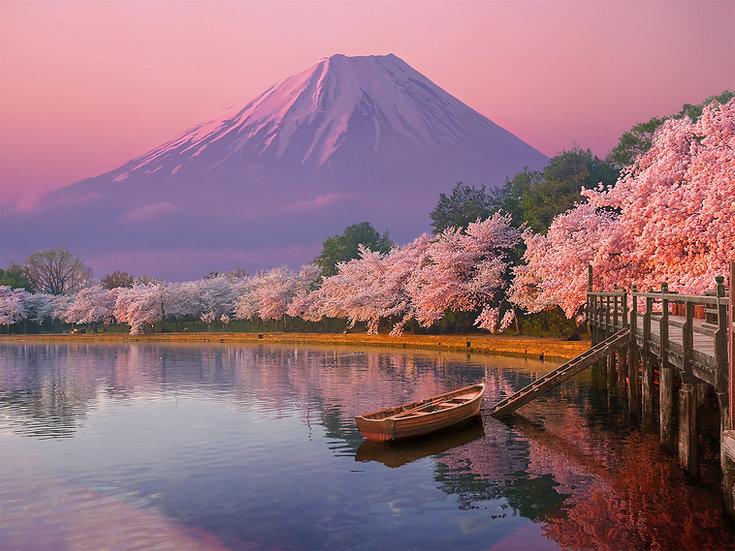 ACRYLIC GLASS ON ALUMINUM BASE Japan Cherry Blossom