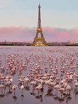 CANVAS Flamingos in Paris