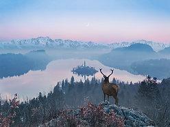 ACRYLIC GLASS ON ALUMINUM BASE Overlooking Lake Bled