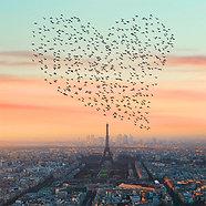 ACRYLIC GLASS ON ALUMINUM BASE Paris Love