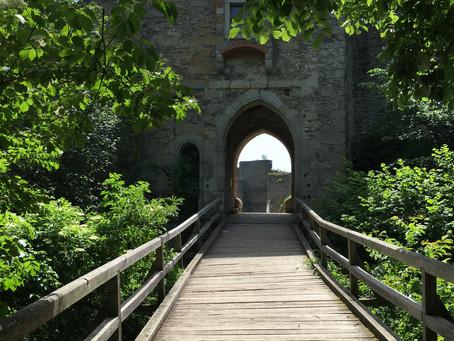 Castle Ruin: Schaunberg
