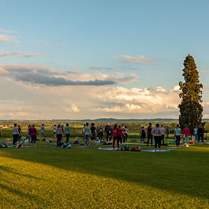 Bilton Grange Sunset Yoga