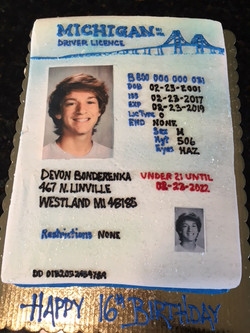 Michigan Drivers License