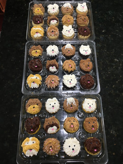 Shaggy Dog Cupcakes