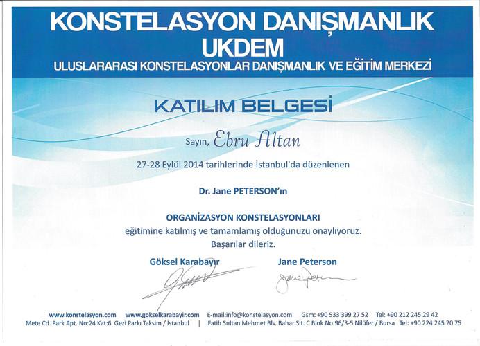 Dr. Jane Peterson - Organizasyon Konstelasyonları Atölye Çalışması - 2014