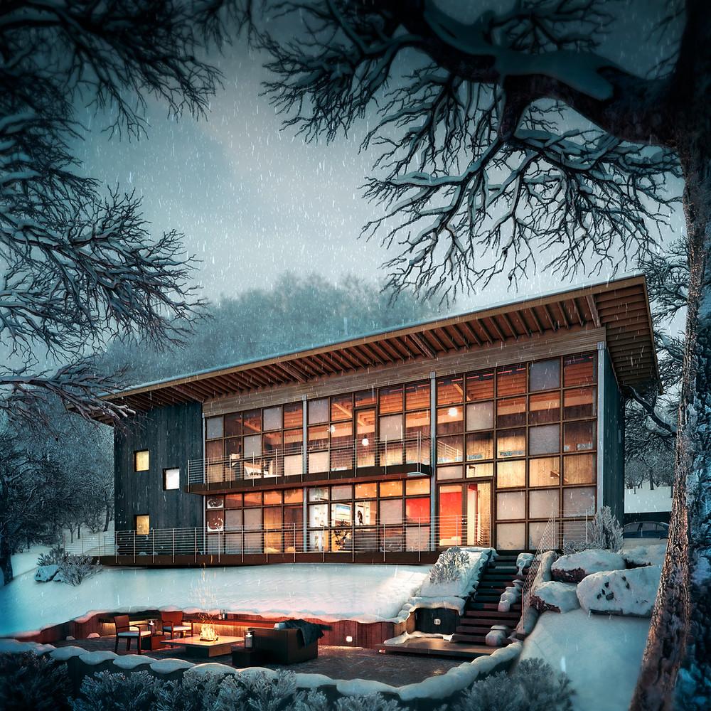 snow_A21 stylized.jpg